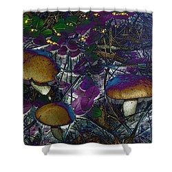 Magic Mushrooms Shower Curtain by Barbara S Nickerson