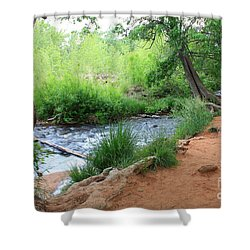 Magical Trees At Red Rock Crossing Shower Curtain by Carol Groenen