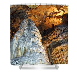 Shower Curtain featuring the photograph Magnificence by Lynda Lehmann
