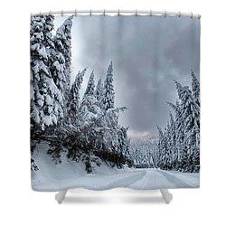 Magnificent Forest Shower Curtain by Evgeni Dinev
