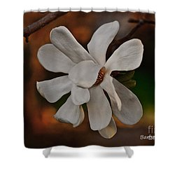 Shower Curtain featuring the photograph Magnolia Bloom by Barbara McMahon