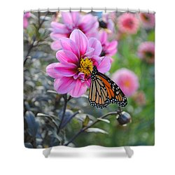 Shower Curtain featuring the photograph Making Things New by Michael Frank Jr