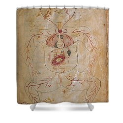 Mansurs Anatomy, Pregnant Woman, 15th Shower Curtain by Science Source