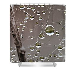 Many Worlds In One Small Space Shower Curtain