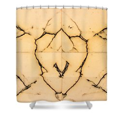 Marble Face Shower Curtain