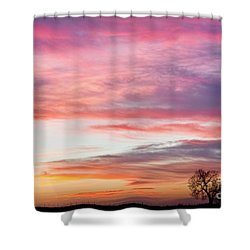 March Countryside Sunrise  Shower Curtain by James BO  Insogna