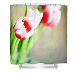 March Tulips Shower Curtain by Darren Fisher