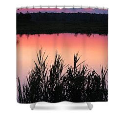 Shower Curtain featuring the photograph Marsh Sunset by Clara Sue Beym
