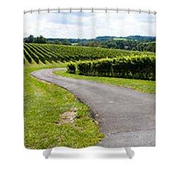 Maryland Vineyard Panorama Shower Curtain by Thomas Marchessault