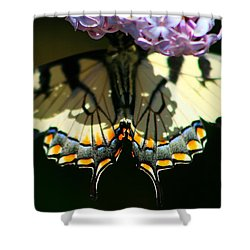 Masked Monarch Shower Curtain