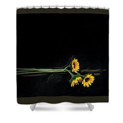 Master Sunflowers Shower Curtain by J R Baldini M Photog