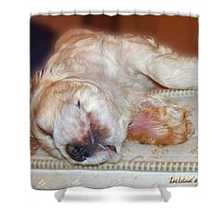 Mattress Tester Shower Curtain by Debbie Portwood