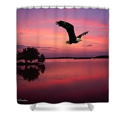 Shower Curtain featuring the photograph Mauve Sundown Eagle  by Randall Branham