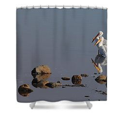 Me And My Gal Shower Curtain by Donna Blackhall