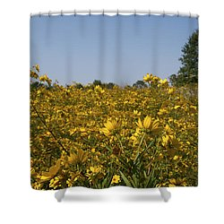 Meadow At Terapin Park Shower Curtain