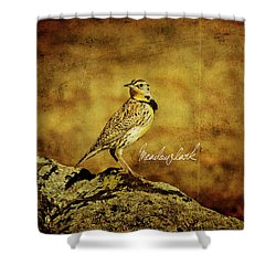 Meadowlark Shower Curtain by Lana Trussell