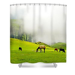 Meadows Of Heaven Shower Curtain by Syed Aqueel