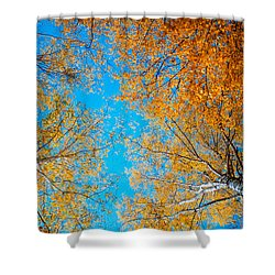 Meet In Heaven. Autumn Glory Shower Curtain by Jenny Rainbow
