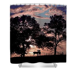Meeting In The Sunset Shower Curtain by Bill Stephens