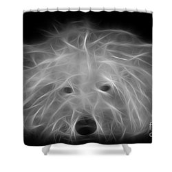 Merlin Shower Curtain by Alyce Taylor