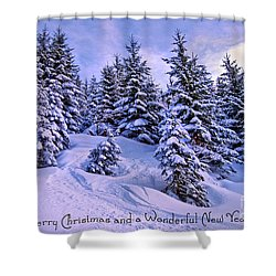 Merry Christmas And A Wonderful New Year Shower Curtain by Sabine Jacobs