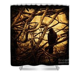 Messenger Shower Curtain by Andrew Paranavitana