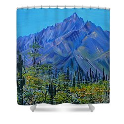 Mexico. Countryside Shower Curtain