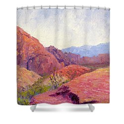 Mid Day Valley Of Fire Shower Curtain by Terry  Chacon