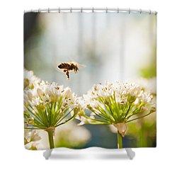 Mid-pollenation Shower Curtain by Cheryl Baxter