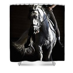 Midnight Ride Shower Curtain by Wes and Dotty Weber
