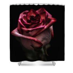 Midsummer Night's Dream Shower Curtain