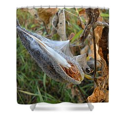 Milkweed - Spread Thy Seed Shower Curtain