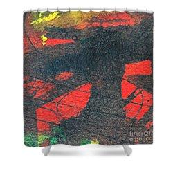 Mindscape 4 Shower Curtain by Ana Maria Edulescu