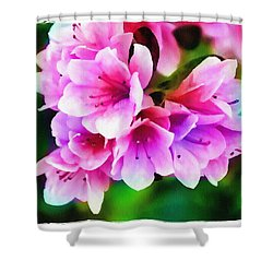 Shower Curtain featuring the photograph Miniature Azaleas by Judi Bagwell