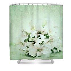 Mint Green Shower Curtain by Priska Wettstein