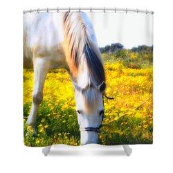 Mirage Shower Curtain by Stelios Kleanthous