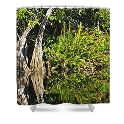 Shower Curtain featuring the photograph Mirror Pond by Anne Mott