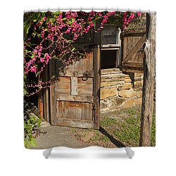 Shower Curtain featuring the photograph Mission San Jose 3 by Susan Rovira
