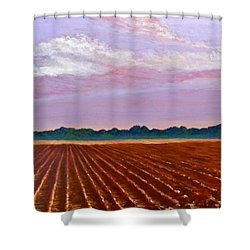 Mississippi Land And Sky Shower Curtain by Jeanette Jarmon