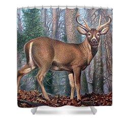 Missouri Whitetail Deer Shower Curtain
