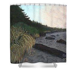 Misty Beach Shower Curtain by Ginny Neece