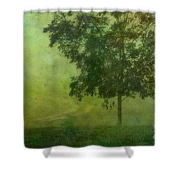 Misty Country Lane Shower Curtain by Judi Bagwell