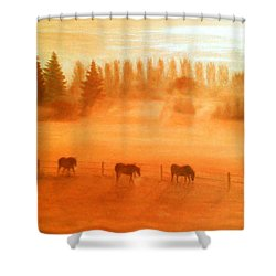 Misty Morning Shower Curtain by Ronald Haber