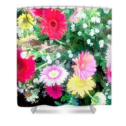 Mixed Asters Shower Curtain by Elaine Plesser