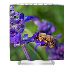 Shower Curtain featuring the photograph Mmmm Honey by Tom Gort