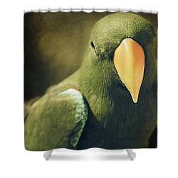 Moments Like These Shower Curtain by Sharon Mau
