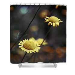 Momentum 01-02a Shower Curtain by Variance Collections
