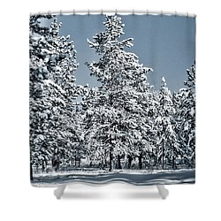 Shower Curtain featuring the photograph Montana Christmas by Janie Johnson