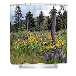Shower Curtain featuring the photograph Montana Wildflowers by Athena Mckinzie