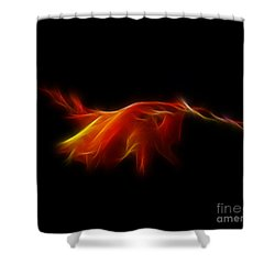 Shower Curtain featuring the photograph Montbretia by Lynn Bolt